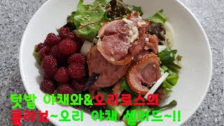 오리로스 야채셀러드]  [텃밭 야채로 만든] 감칠맛 오…