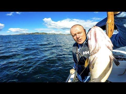 Bottom Fishing With Bait