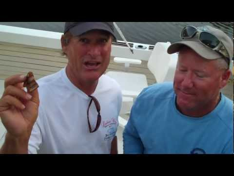 Never Bring Bananas On A Sport Fishing Boat!