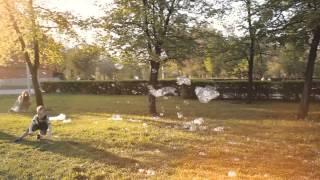 Фотосессия с мыльными пузырями. Челябинск(Итогом прогулки станет ваше семейное видео. 8-919-333-3224 - Ирина Волшебница., 2014-07-16T07:20:51.000Z)