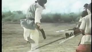 蛇鶴八拳(日本公開版)ダイジェスト