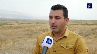 الاحتلال يمنع الفلسطينيين من الاستفادة من موارد الأغوار الطبيعية والمائية (16/9/2019)