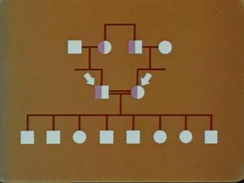 Genes In Families And In Populations (Milner-Fenwick,1963)