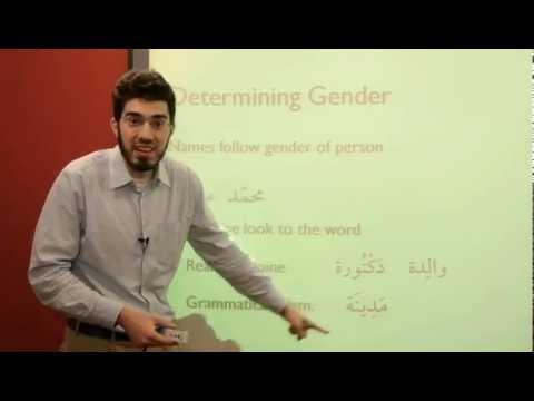 al-kitaab-1.2-|-gender-in-arabic