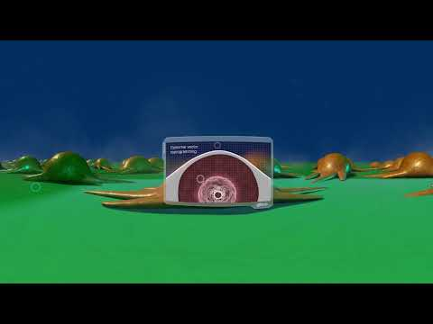 A Gibco Education Virtual Reality Experience: A Cell's Reprogramming Journey