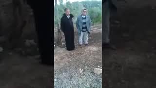 مزرعه خنزير بريه في المغرب