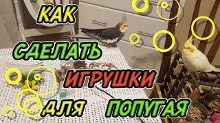 як зробити драбинку для папуги своїми руками