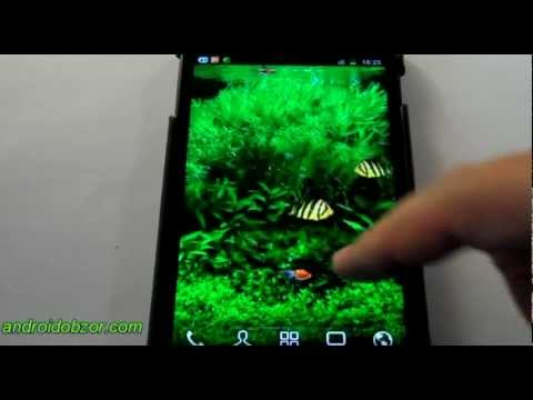 Fish tank 3d live wallpaper youtube for Fish tank 3d live wallpapers