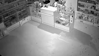 Мужчина украл домик для кота из ветаптеки в Краснодаре (10.03.2019)