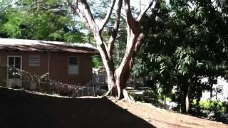 Casa típica en Salinas, Puerto Rico