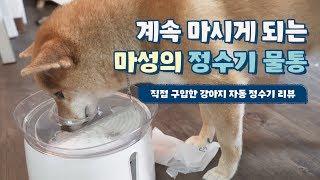 니케에게 강아지 정수기를 사주다 feat.세미 물 먹방…