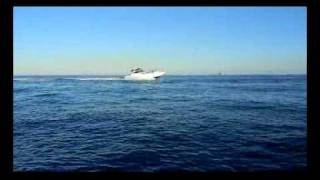 Sea Ray 46' Express For Sale - Part 2