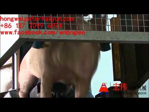 Three Point Electronarcosis Conveyor Pig Electric Stunner Numbing Machine Aturdidor Eléctrico