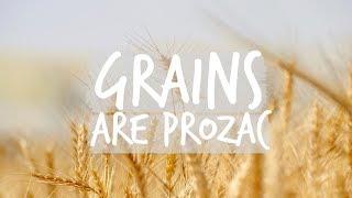 Grains are Prozac thumbnail