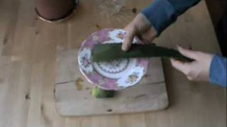 Fresh Aloe Face Mask Recipe To Clear Acne Scarring, Skin Irritation & Redness, Ep133