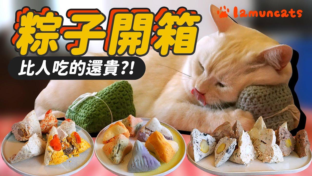 貓狗吃的粽子究竟包什麼料?和貓咪一起過端午┃拉姆有幾噗 ☁