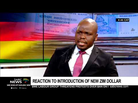 Reaction To Introduction Of New Zim Dollar