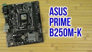 Розпакування Asus Prime B250M-K