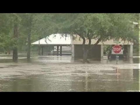Tropical storm Cindy makes landfall on Gulf Coast