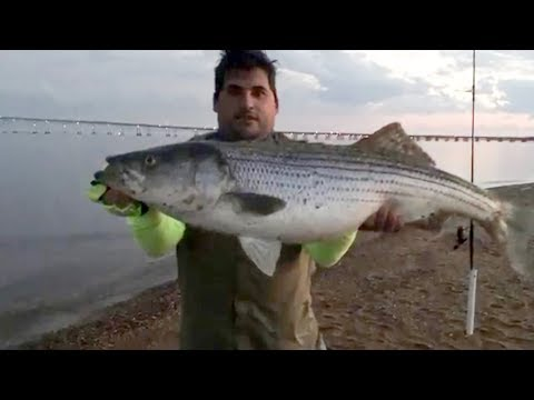 Monster Fish Caught At Sandy Point State Park Fishing Carlos Neves