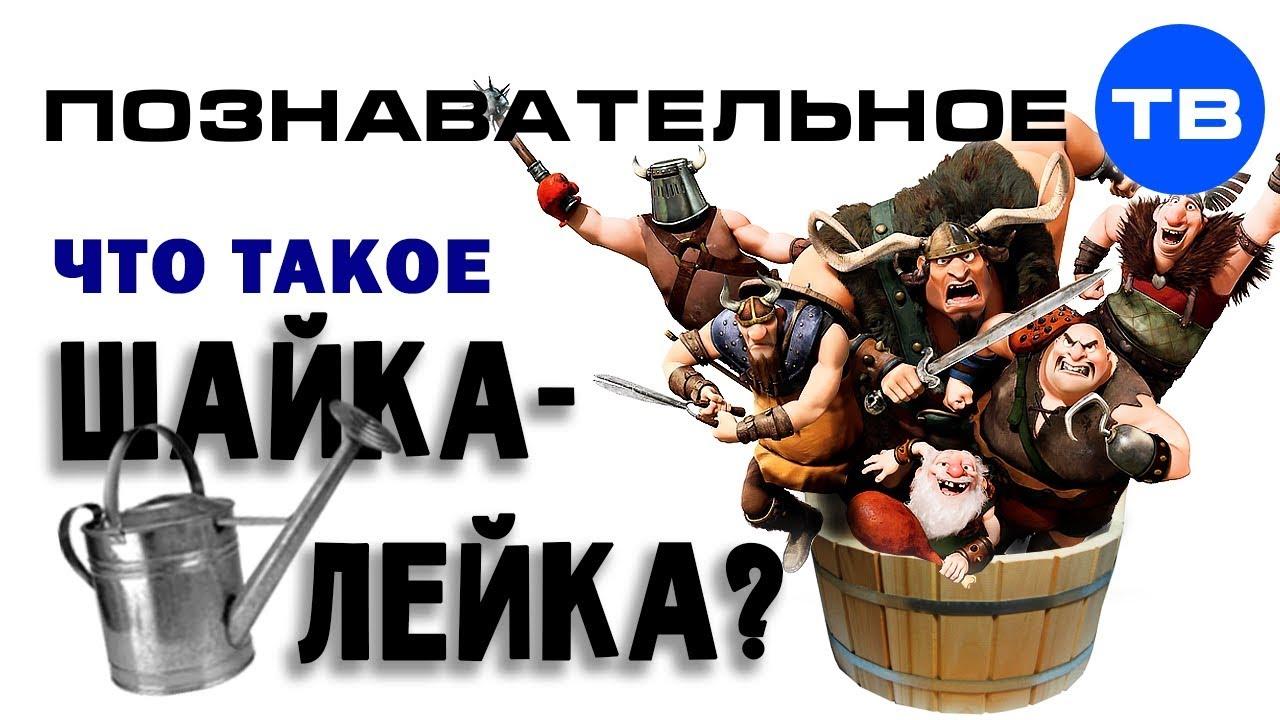 Что такое ШАЙКА-ЛЕЙКА? (Познавательное ТВ, Артём Войтенков)