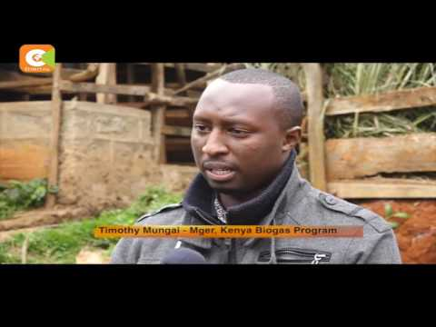Smart Farm: Organic Farming in Murang'a