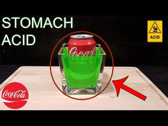 Qué pasa en tu estómago cuando bebes Coca-Cola