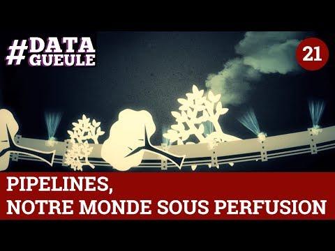 Pipelines, notre monde sous perfusion - #DATAGUEULE 21