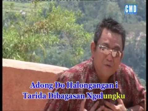 Arvindo Simatupang  - Adong Do Halongangan