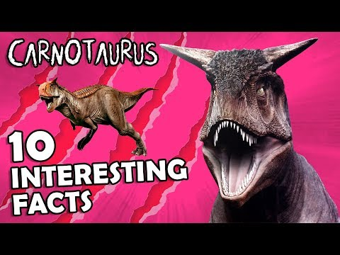 CARNOTAURUS: 10 Interesting Facts...