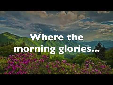Carolina in the Morning Mitch Miller Lyrics