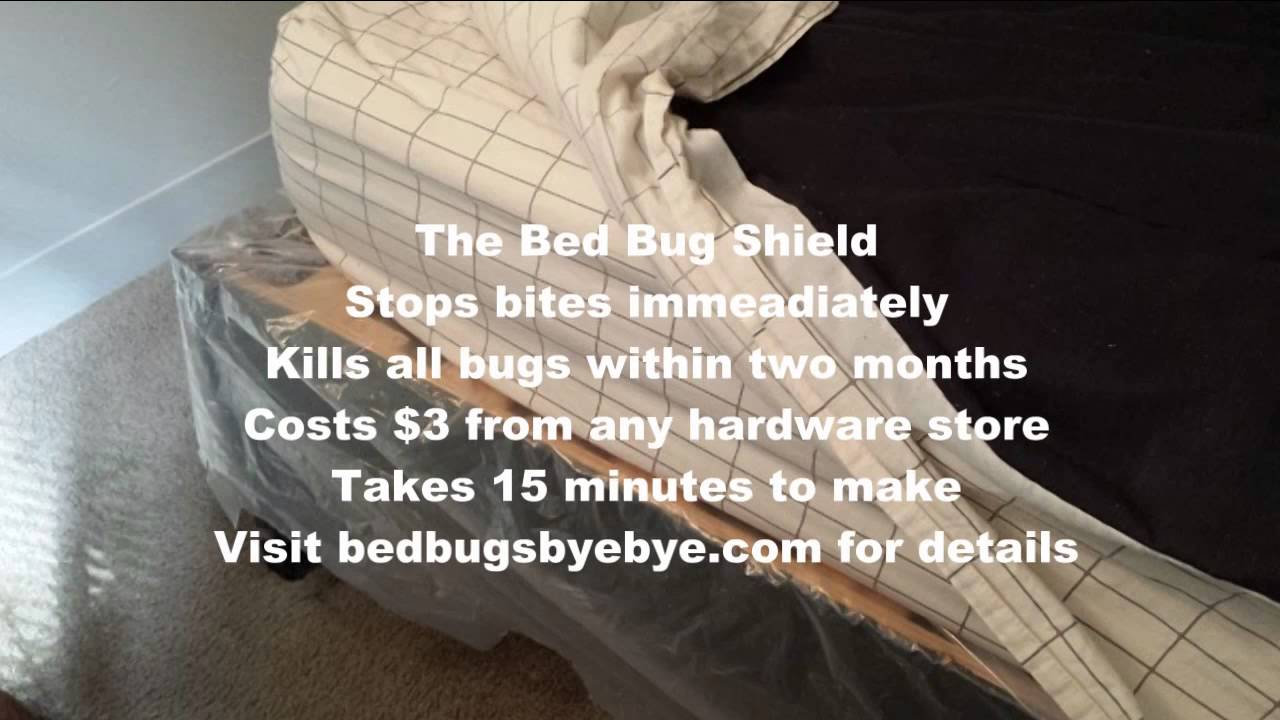 say bye bye to bed bugs with the bed bug shield - youtube
