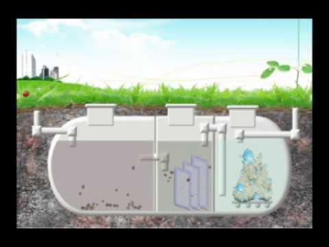 how a septic tank works australia