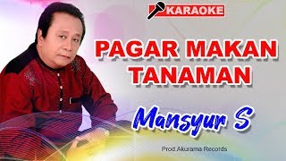 Mansyur S - Pagar Makan Tanaman (Karaoke)