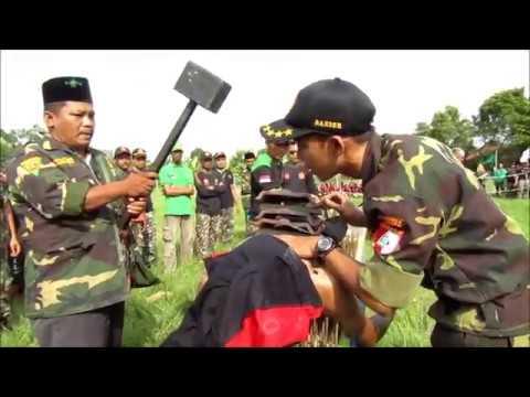 PKD & Diklatsar Banser NU PAC GP Ansor Taman Pemalang 2018.
