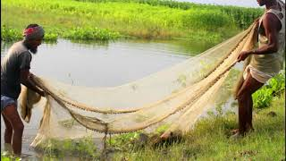 Traditional cast net fishing in village River | Cast Net Fishing at the River with beautiful natural