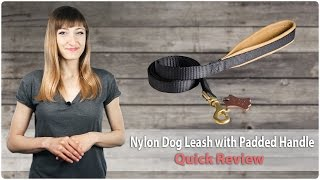 No Rubbing Nylon Dog Leash With Padded Handle - Nochafe - Review