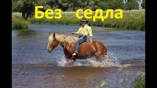 Полезна или вредна езда без седла.