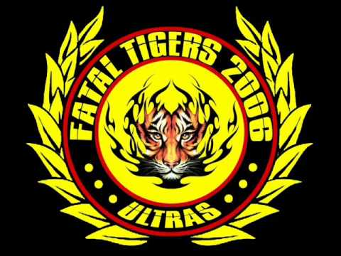 FATAL TIGERS new albume 2014