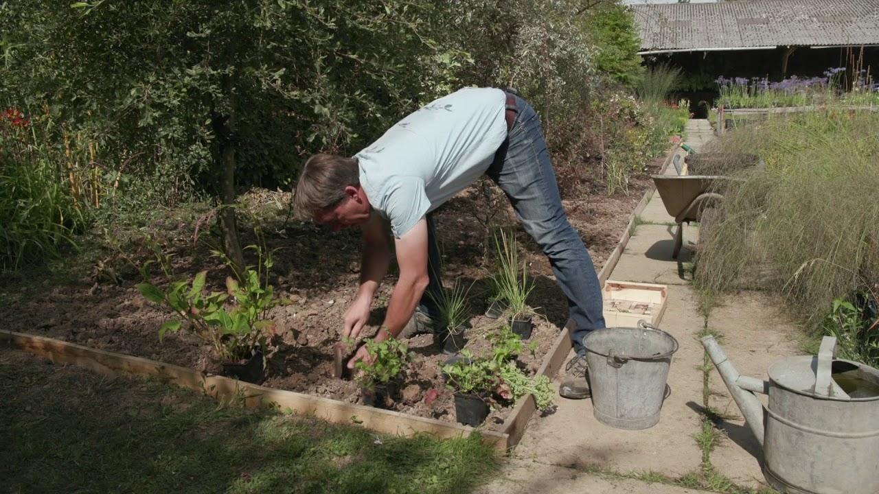 Quoi Planter Dans Une Terre Argileuse parlons technique : planter en terre argileuse