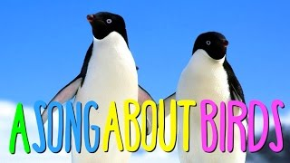 """""""A SONG ABOUT BIRDS"""" by Christiaan Van Vuuren"""