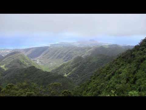 Hawaii Loa Ridge Hike