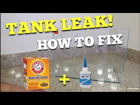 Fixing Leak Filled Aquarium (Baking Soda + Super Glue)