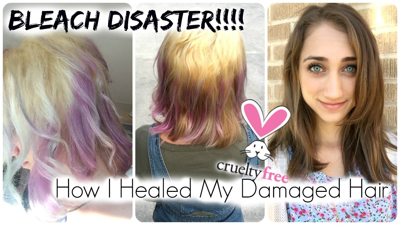 How I M Regaining Healthy Hair After Damage From Bleach