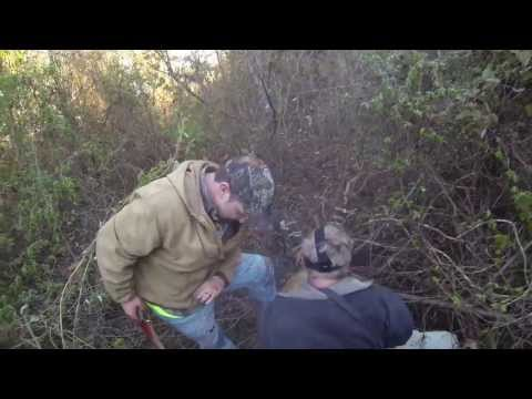 GoPro: *Graphic* Arkansas Wild Hog Hunting With Dogs And Knives