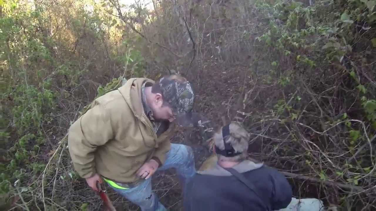 Gopro Graphic Arkansas Wild Hog Hunting With Dogs And