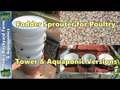 Fodder sprouter for chickens & poultry.. Tower & aquaponic versions..