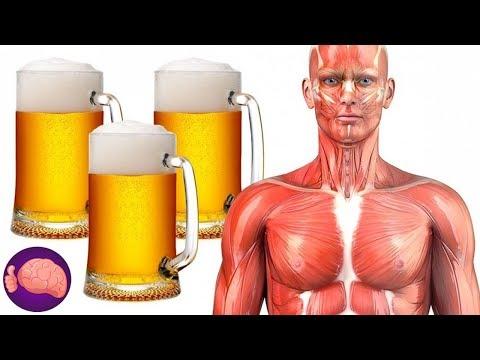 Mira lo que le sucede a tu cuerpo si bebes CERVEZA TODOS LOS D�AS