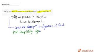 Why Are Villi Present In Intestine And Not In Stomach?