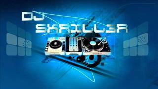Electro House Mix - DJ SKRILL3R vol 1.